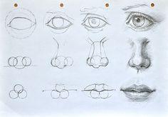sakonitus:  http://www.deviantart.com/art/Facial-features-constru...