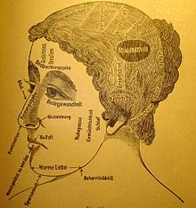 """Phrenology, """"Die Directrice"""", what's on a woman's mind..."""