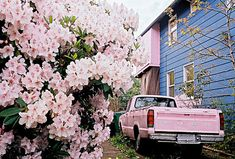Love the pink truck.  It just has to belogn to a woman.