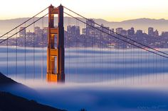 Golden Gate Bridge | San Francisco, California, USA Time Travel, Places To Travel, Places To See, Travel Destinations, San Francisco Bridge, Living In San Francisco, Vacation Wishes, California Dreamin', Best Cities
