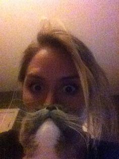 Minou Cat | Pawshake
