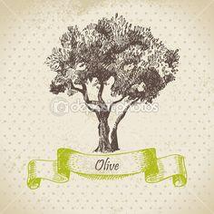 árvore verde-oliva. mão ilustrações desenhadas — Ilustração de Stock #16226233