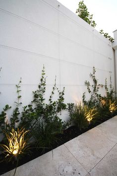 Best Modern Front Yard Designs and Ideas - Home Garden