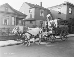 CITY LIFE: Horses pulling garbage wagon in Seattle, 1915