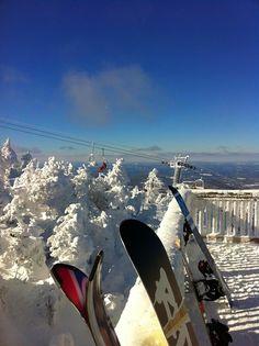 Svensk snowboardforlust