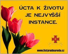Globallshare   Make the Most of World Bratislava, Krystal, Mark Twain, Signs, World, How To Make, Books, Hampers, Lady