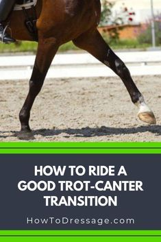 Horse Riding Tips, Horse Tips, Riding Gear, Trail Riding, Horse Exercises, Types Of Horses, English Riding, Equestrian Outfits, Equestrian Quotes