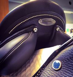 Horse Black English Close Contact All Purpose Saddle Cantle Stübben Cross Country Show Jumping Hunter Jumping Saddle, Dressage Saddle, Cleveland Bay, Horse Mane, Horse Fashion, English Saddle, Riding Gear, Horse Saddles, Show Jumping