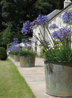 Fine garden ornament, fountains & planters 2014