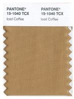 PANTONE 15-1040 Iced Coffee - mini Swatch card