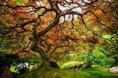 Landscape Photography by Pete Piriya