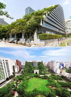 Acros Gebäude In Fukuoka, Japan – - Japanese Architecture Modern Japanese Architecture, Green Architecture, Sustainable Architecture, Landscape Architecture, Landscape Design, Architecture Design, Japanese Modern, Minimalist Architecture, Building Facade