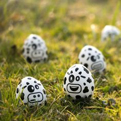 Little cows - easter eggs