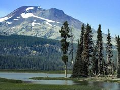 The Hiking Initiative provides a comedic look at our greatest trails, reviews, and topics surrounding our beloved Public Lands. Hiking Tips, Mount Rainier, Trail, Public, Adventure, Mountains, Outdoor, Outdoors, Adventure Movies