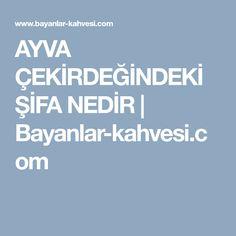 AYVA ÇEKİRDEĞİNDEKİ ŞİFA NEDİR | Bayanlar-kahvesi.com