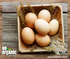 Onorganic'in yürüyen tavukları sabah kahvaltılarınıza sağlık ve lezzet katacak.  #onorganic #organik #organikürün  #sağlıklıyaşam
