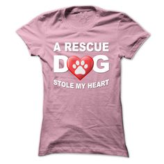 A Rescue Dog Stole My Heart