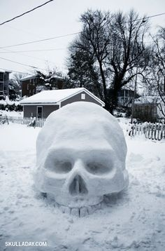 Bones ... I might have to make one of these this winter!!!