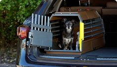 MIMT - The bars in the MIM Safe Variocage Minimax are closer together to prevent smaller dogs and cats from escaping or poking their heads out between bars during transit. Its small footprint leaves considerable space for additional cargo.      Variocage is the Most Rigorously Crash Tested and Proven Dog Transport Cage in the World     ONLY Crash Tested Cage Rated Using Government Safety Standards (ISO 27955 | ECE R-17 | ECE R-44)     ONLY Cage Tested Using Safe Pet Crash Test Standards…