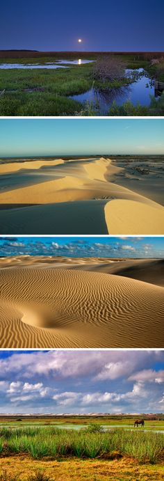 Parque Nacional da Lagoa do Peixe - Rio Grande do Sul - Brasil
