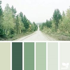 today's inspiration image for { color road } is by @arctic_stories ... thank you, Renate, for another wonderful #SeedsColor image share!