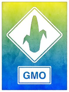 """In """"Chemical creep: Farmers return to pesticides as GMO corn loses bug resistance,"""" Grist reports: """"The frustrating part is that rootworms' resistance to the Bt corn gene was entirely predictable — so predictable that some companies seized it as a financial opportunity."""" If certain corporations succeed in forcing us to stay on the same GMO-pesticide failure track, many Americans are likely to be forcibly exposed to increasing amounts of increasingly toxic pesticides via air, water, and food."""