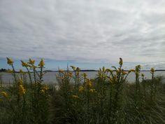 Cloudy day at Carson Beach