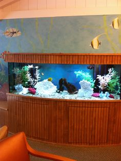 The pediatrician's office is so calming specially with this aquarium.