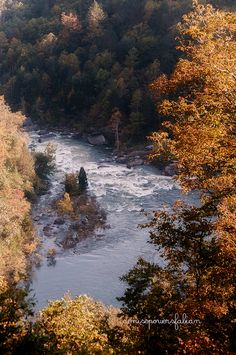 Pillow Rapids on the Gauley River, taken from Carnifex Ferry Battlefield, Summersville, West Virginia  by Denise Powers Fabian | Flickr - Photo Sharing!
