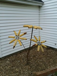 Rebar and corncobs.  Make a deco sunflower squirrel and/or bird feeder. Give your hubby something to weld that you can show off!