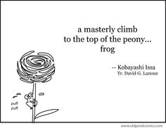 A masterly climb. Htc One M9, Haiku, Peonies, Writing, Issa, Zen, Heart, Being A Writer, Hearts