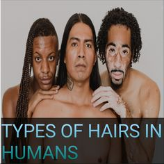 Know how many types of hairs exist in human body #haircare #hairbeauty #haircaretips #hairlovers #hairloss #hairs #hairlosscures #hairlosstreatment #hairremedies #hairproblams #hairgrowth #hairline #hairgoals #hairideas #damagedhairs