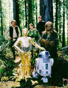 Han Solo, Leia, Luke, C3-PO, R2-D2 and Chewbacca