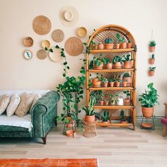 home plant shelfie plant display plant gang plant family small plants terracotta pots green foliage Living Room Plants, Room With Plants, House Plants Decor, Boho Living Room, Small Plants, Indoor Plants, Plant Wall Decor, Living Rooms, Cheap Home Decor