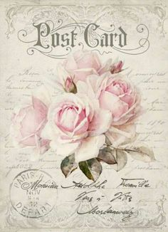 Postcard with pale pink roses.