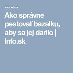 Ako správne pestovať bazalku, aby sa jej darilo | Info.sk