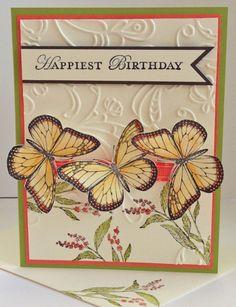 Sunday Butterflies