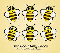 One Bee, Many Faces.