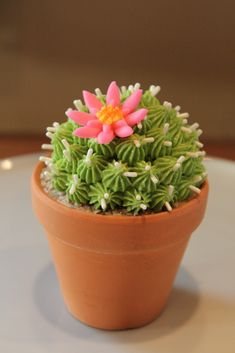 Cactus cupcakes: pipe icing on top to give it the spiky cactus look and place in tiny terracotta pot with some crushed up graham crackers for sand.