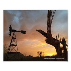 Windmill and Saguaro Cactus Skeleton at Sunset Photo Print - photography gifts diy custom unique special