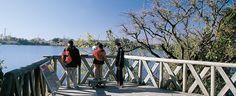 Atracciones gratuitas   Sitio oficial de turismo de la Ciudad de Buenos Aires- RESERVA ECOLÓGICA: Es el mayor espacio verde de la ciudad: 350 hectáreas de naturaleza viva, con lagunas, bosques y más de 200 tipos de animales. Ideal para visitar los fines de semana, disfrutar de paseos en bicicleta y del aire puro.