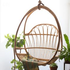 Cohanga Hanging Chair