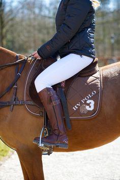 HV POLO Schabracke Favouritas - Schabracken - Krämer Pferdesport Online-Shop