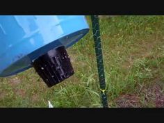 How To Build A Self Watering Rain Gutter Grow System!  I could do this and keep gold fish in the gutters and hook it up to a rain barrel.