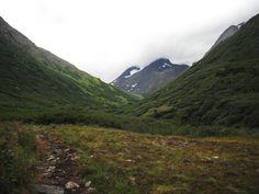 Crow's Pass Mountains Field 7 by prints-of-stock.deviantart.com on @DeviantArt