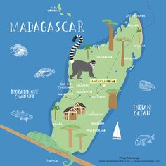 Lámina mapa Madagascar Madagascar illustrated map por TropicoPolar