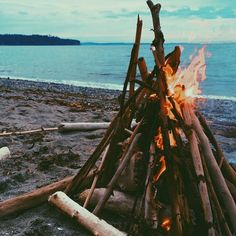 beach fires + sand + winter (+ maybe a blanket or two + hot chocolate) = delicious warmth