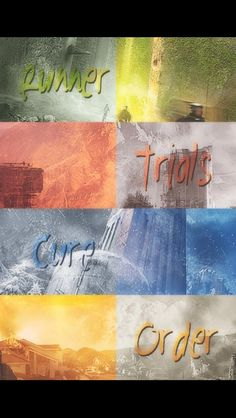 The Maze Runner, we should have some symbol and a fandom for the maze runner because it's shucking awesome!!