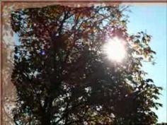 Jan Nedvěd - Zvony zvoní jen chvíli [4] - YouTube