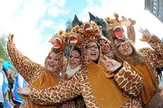weiberfastnacht köln kathedrale fasching ideen giraffen